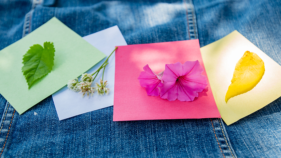 Color paper squares with leaves and flowers of the same color