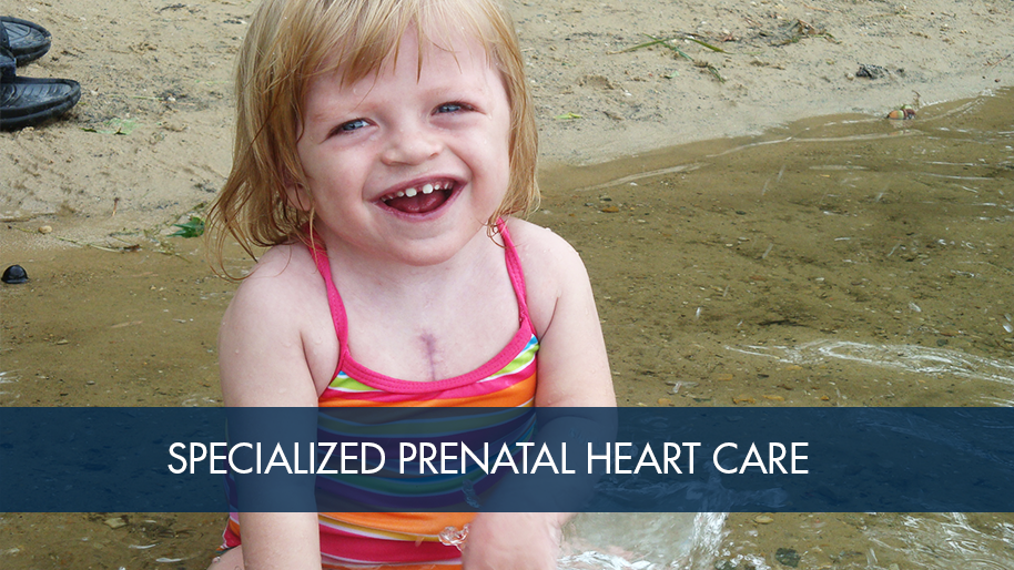 Prenatal Heart Care