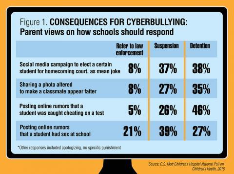 Cyberbulling graphic