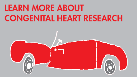 Congenital Heart Research