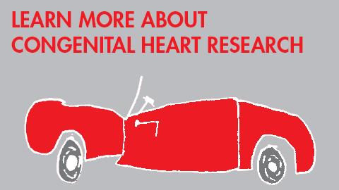 Congenital Heart Research