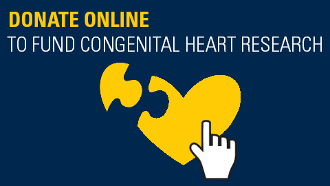Donate Online to Fund Congenital Heart Research