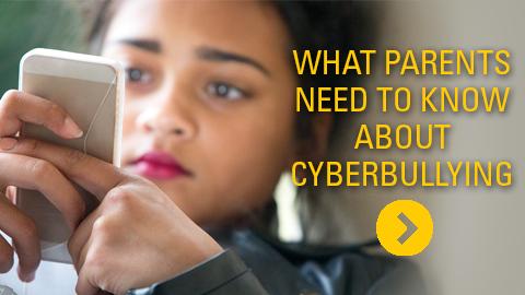 Cyber Bully Blog Post