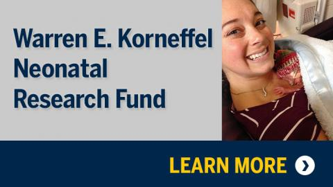 Warren E. Korneffel Neonatal Research Fund