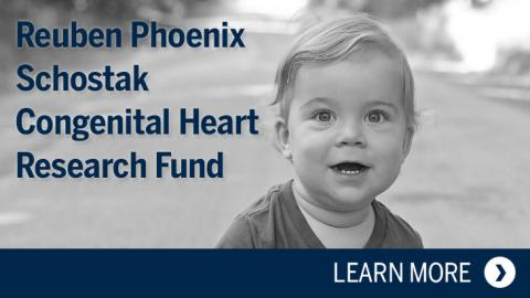 Reuben Phoenix Schostak Congenital Heart Research Fund