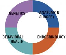 Multidisciplinary Care & Treatment